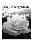 The Undergraduate 2016 by Saint Mary's College of California